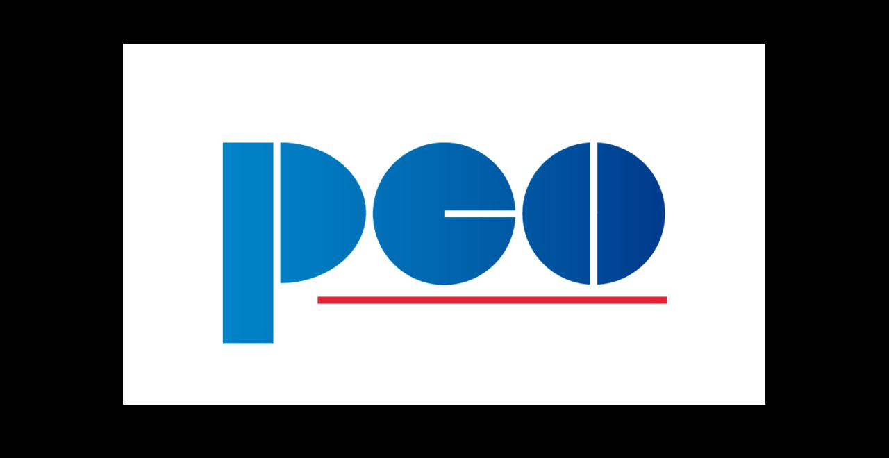 https://pcosa.com.pl/wp-content/uploads/2019/02/PCO-logo-RGB-biała-apla-1280x660.png