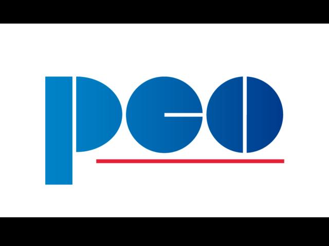 https://pcosa.com.pl/wp-content/uploads/2019/02/PCO-logo-RGB-biała-apla-640x480.png
